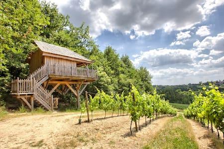 Cabane dans les arbres aux portes de Bordeaux - Arbis