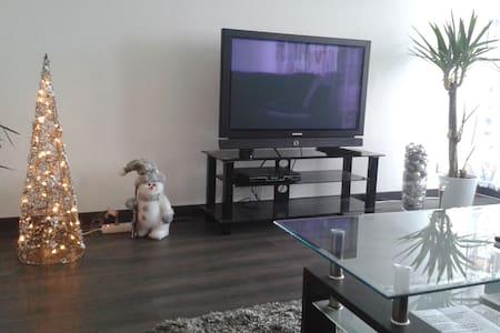 Bel appartement entierement  renove - Hœnheim