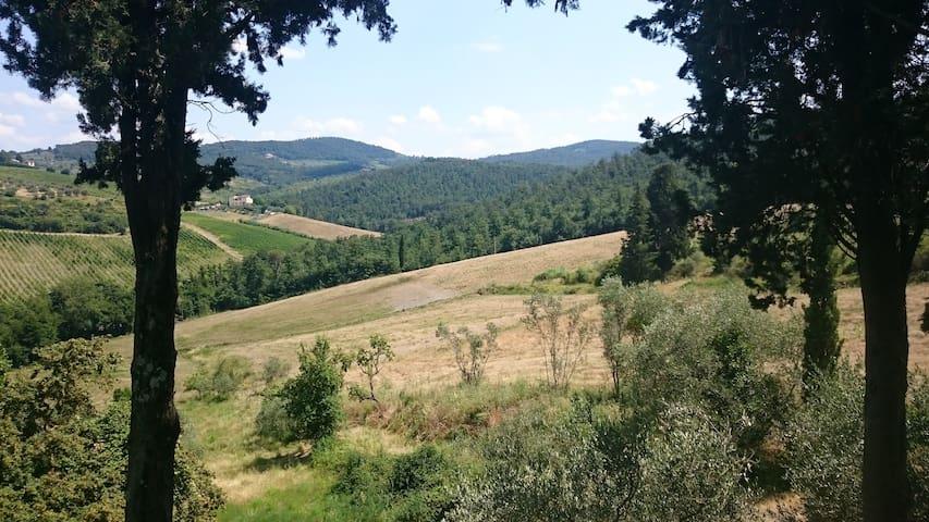 Tuscan hilltop paradise - La vista