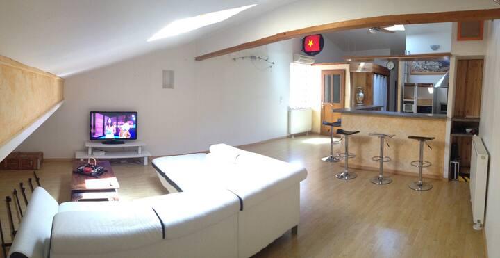 Chambre à louer dans le vieux Blagnac