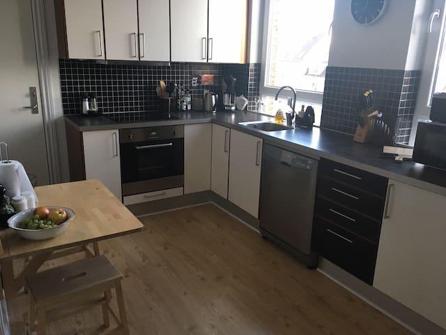 3 værelses hyggelig og central lejlighed i Aalborg - Aalborg - Lägenhet