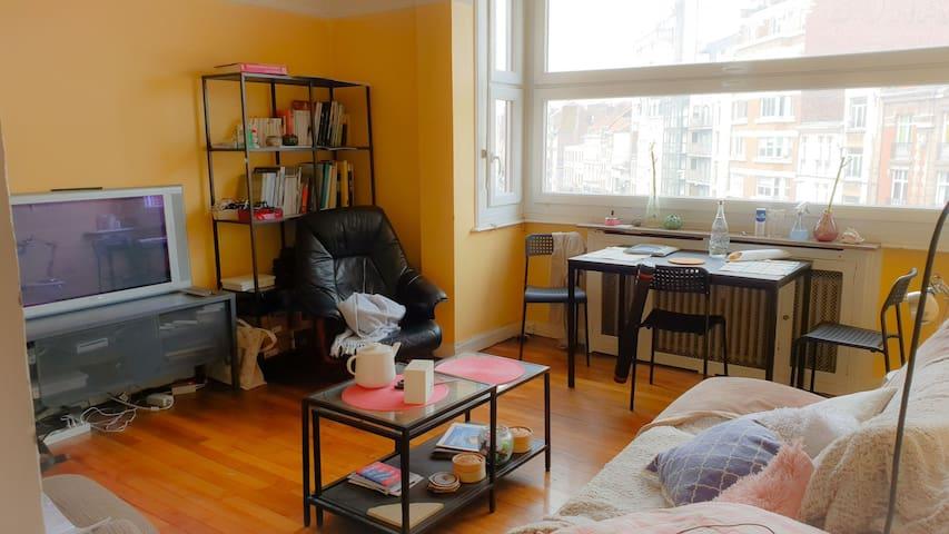 Joli appartement en plein coeur de Lille