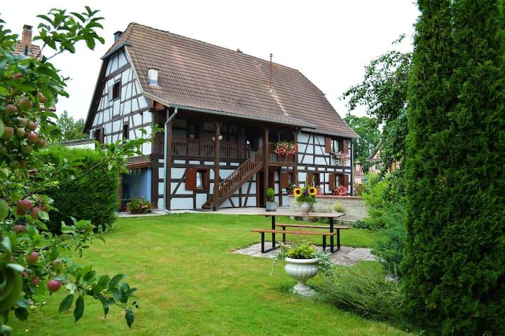 Gite du Ried - Jebsheim - Квартира