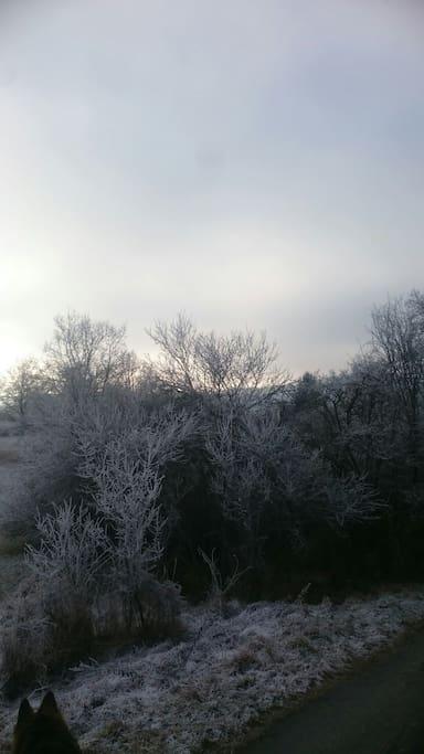 Winteraussicht von der Terrasse