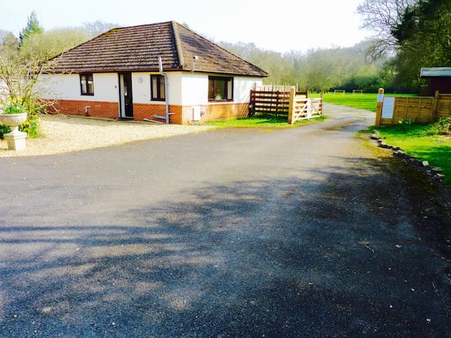 Woodlands Bungalow, WiFi. Hot Tub. BBQ. Private garden. Set in 3 acres. Pet friendly. Near the Jurassic coast.