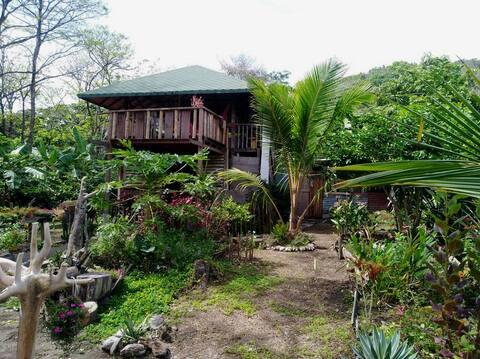 La Cabañita, San Pacho, Chocó. •Entre selva y mar•