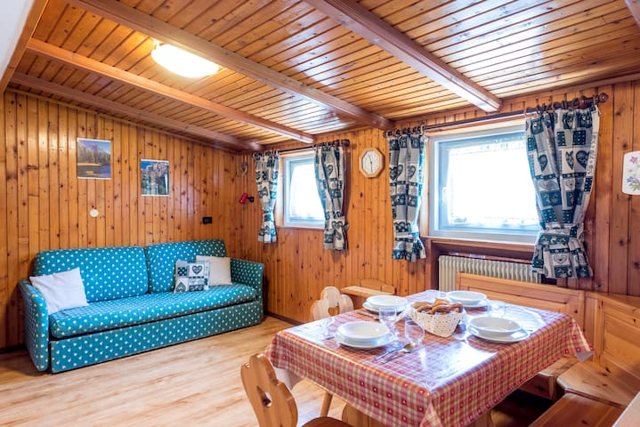 Alpine apartment in the center of Val di Fassa