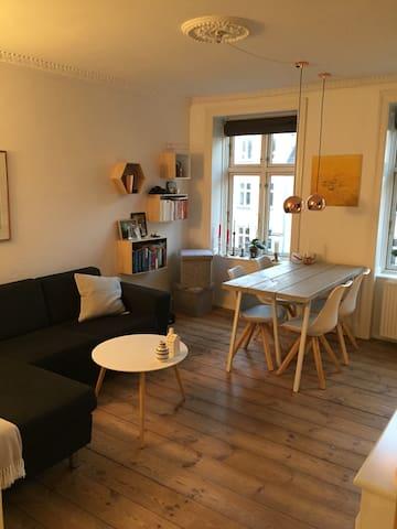 Super cosy Frederiksberg-apartment - Frederiksberg - Huoneisto