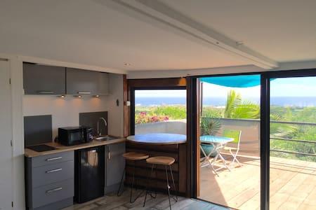 bungalow vue océan  avec bassin de relaxation - Saint pierre - 小平房