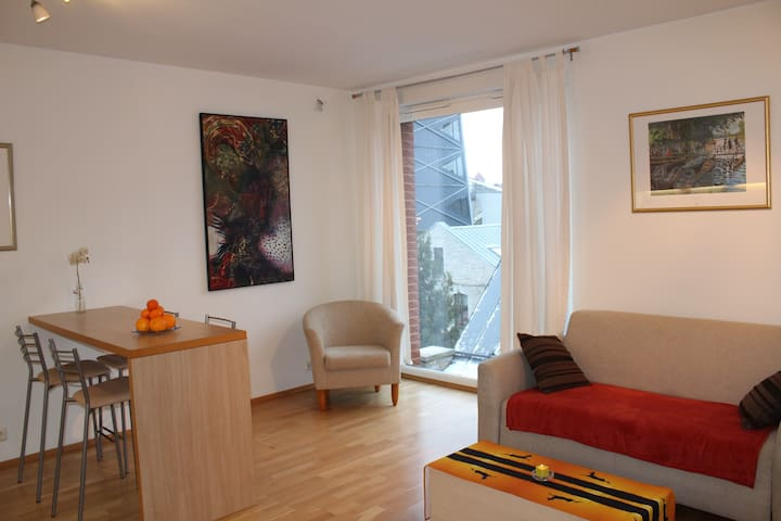 Stylish studio flat in the heart of Tallinn - Tallinn - Apartament