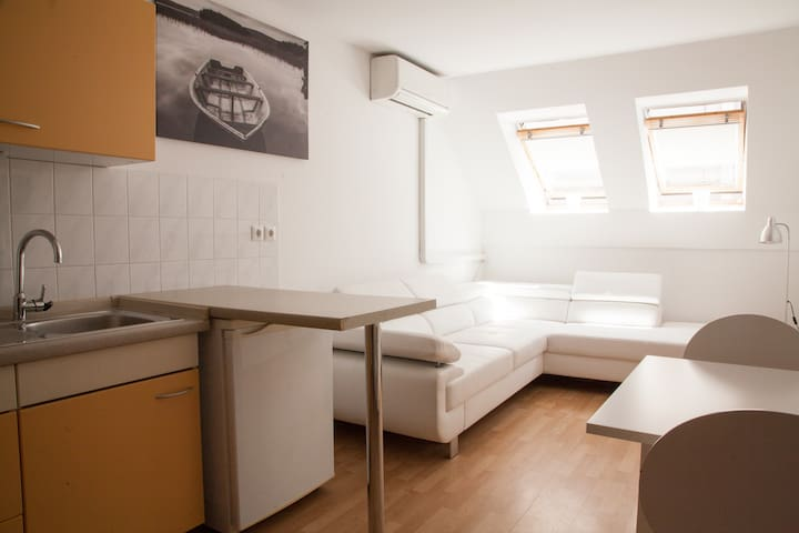 Right Apartment 15 minutes walk from city center