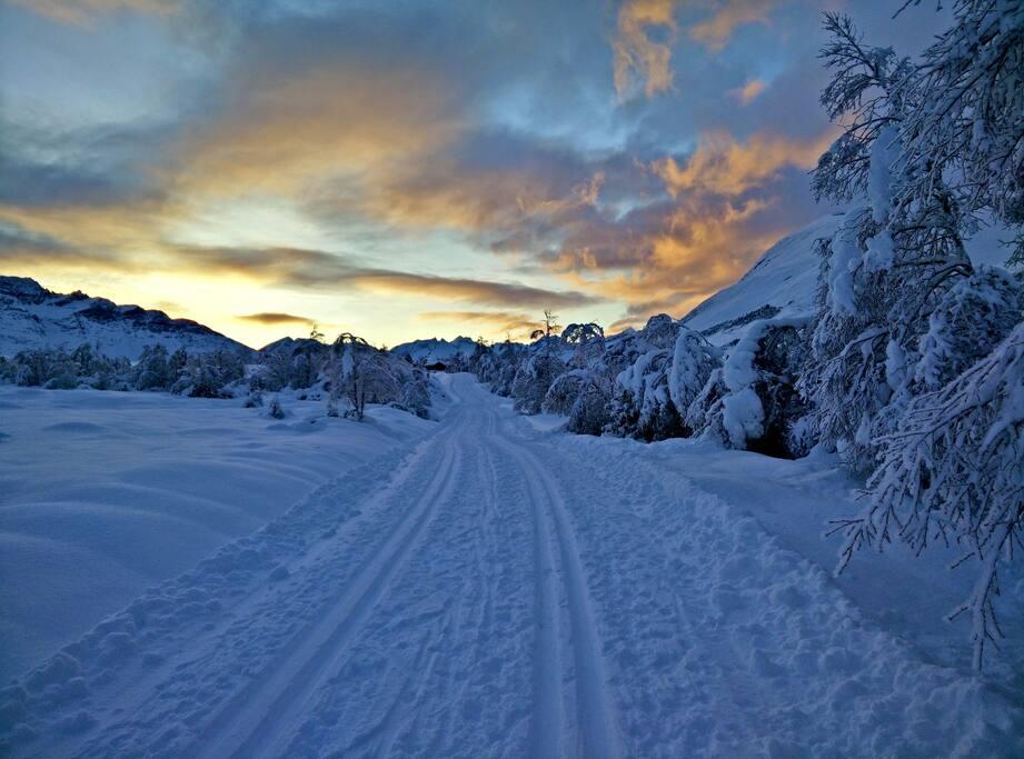 Cross country skiing tracks at Sunnmørsalpane Skiarena Fjellsætra, 20 minutes away.