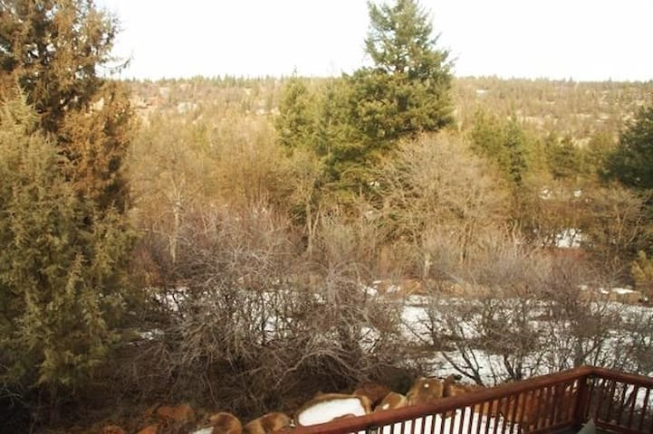 Looking off the balcony in back at winter time.  From the upstairs 2nd bedroom you can also see glimpses of Klamath Lake and the golf course over the tree line.