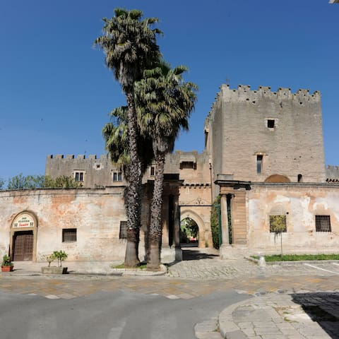 Castello Dentice di Frasso - San Vito dei Normanni - Castillo