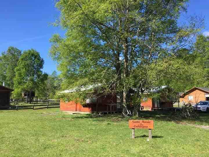 Cabañas familiares en Caburgua entorno natural