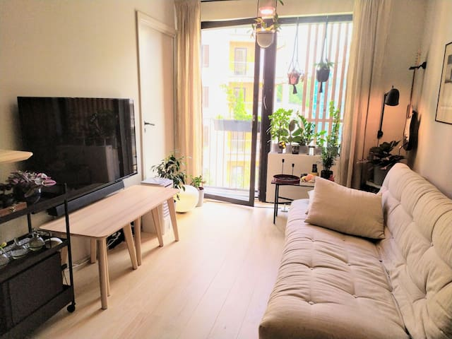 """Main living space with 55"""" Phillips Ambilight TV (with Chromecast Ultra)"""