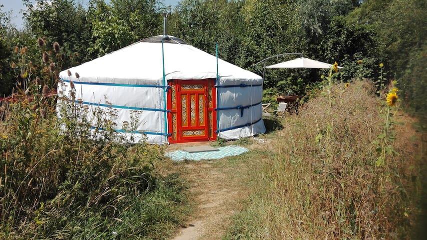 Yurt in de Wildernis