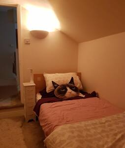 Lovely single room a stones throw from town!
