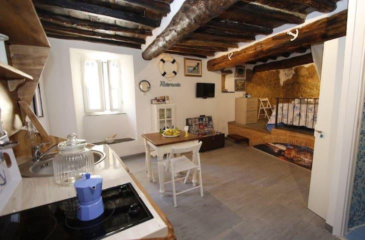 Ca'der Porpo Blu Riomaggiore 5terre - Riomaggiore - Apartamento