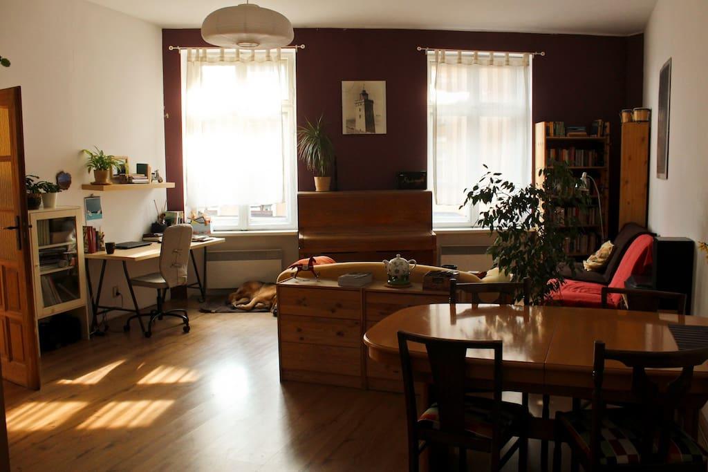 There is a big dining table between the kitchen and the  room  / Pomiędzy kuchnią i pokojem jest duży stół jadalniany