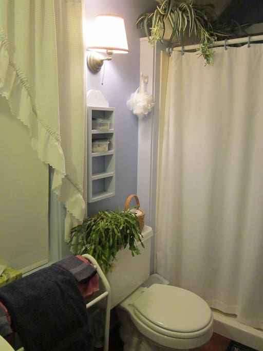 We converted an old closet into this nice periwinkle blue bath room with a shower.