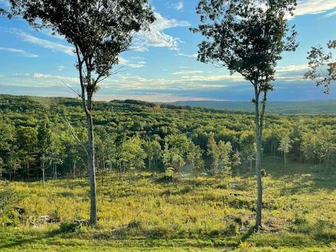 Treetop Vista: Brand-new 3 bdrm modern farmhouse