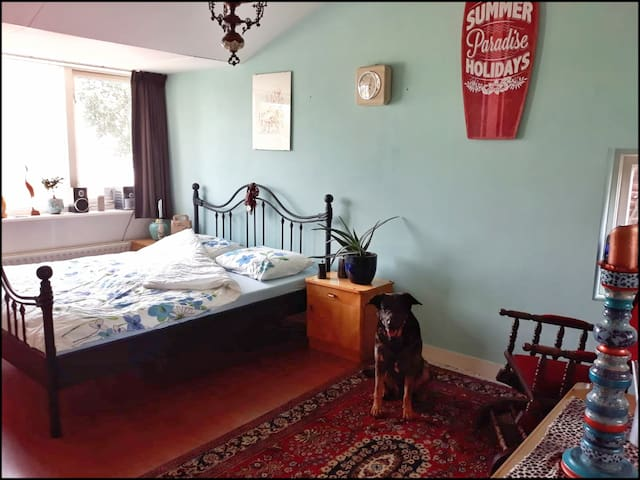 Lovely private room in 1907 house, Beach nearby!