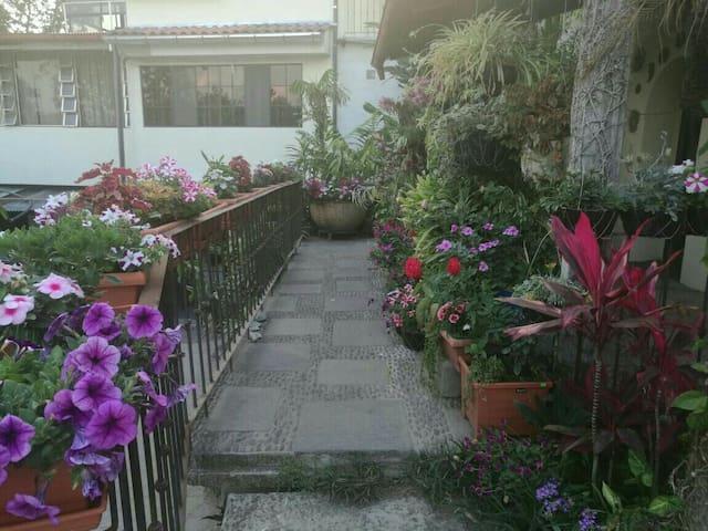 Apartamento rodeado de Naturaleza - Sant Salvador - Pis