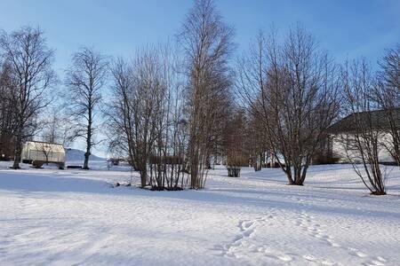 jämlands fijels storsjöskid anledningar fiska  jag