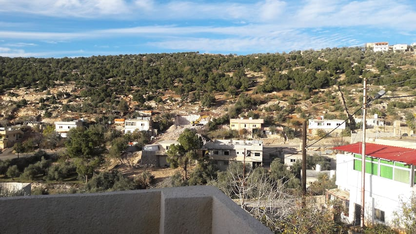 best place inside forest close to ajloun reserve