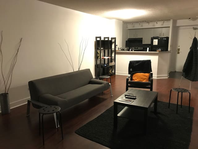 Spacious 1-bedroom in the heart of Downtown