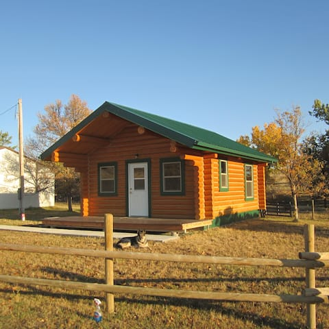 Remote extened stay log cabin, minutes from town.
