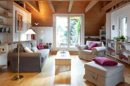 Große helle Dachwohnung, Grünruhelage, Balkon
