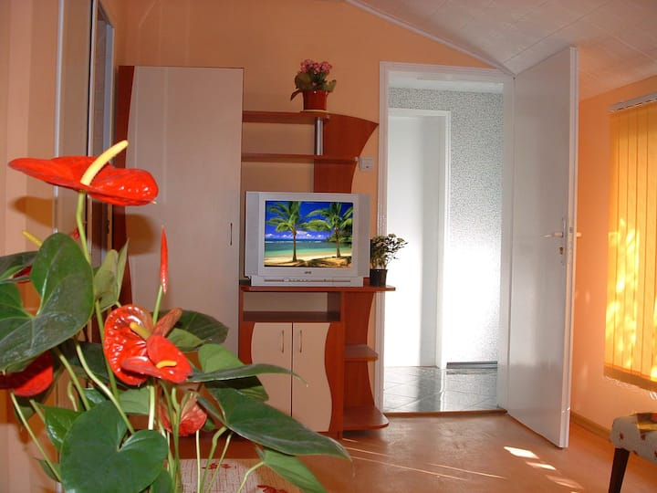 apartment35м2 for 3 adults or 2+2, near the sea