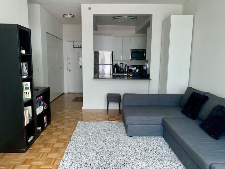 Luxury 2BR apartment in Midtown