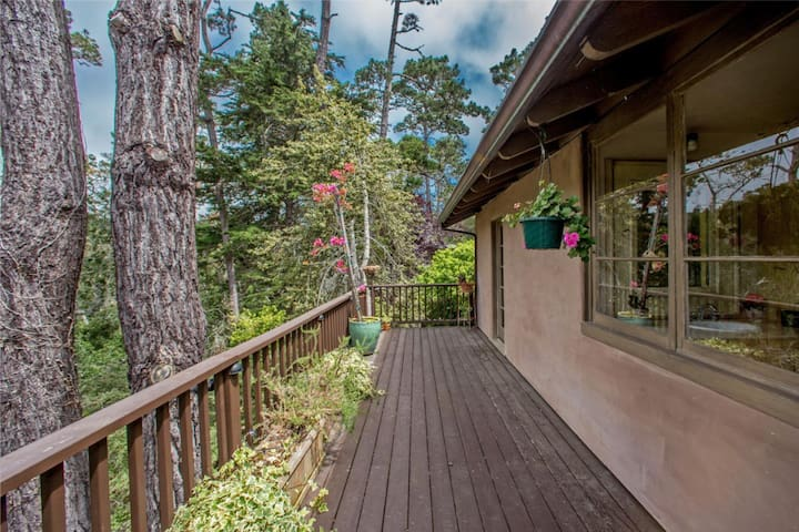 Spacious deck with forest and canyon view into Pebble Beach