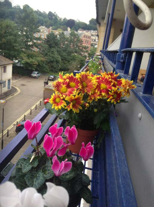I fiori nel balcone