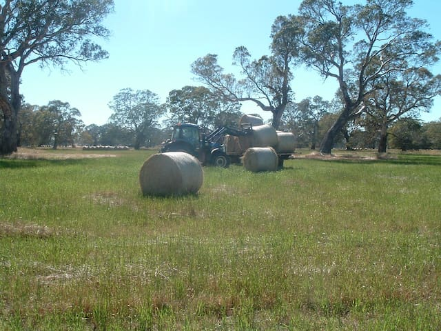 Farm work - hay bales.
