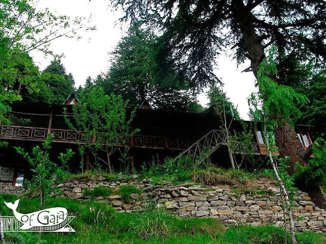 Home of Gaia - Yogic Abode - Manali - Cabana