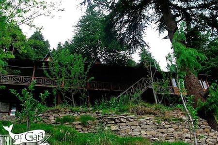 Home of Gaia - Yogic Abode - Manali - Blockhütte
