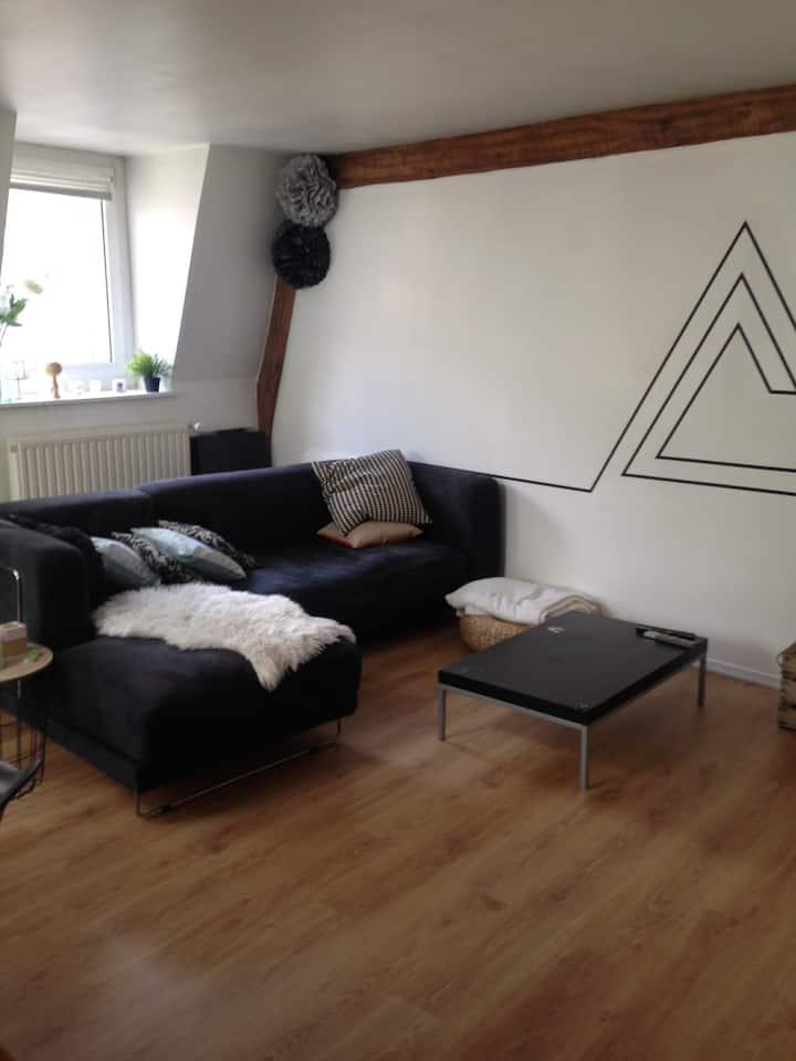 Grand appartement au coeur de la braderie de Lille