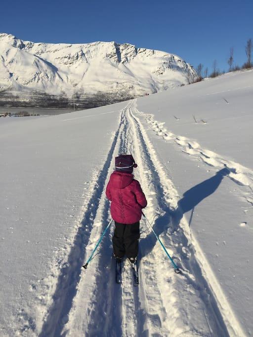 Fantastiske muligheter for korte og lange skiturer. Here we have really good possibilities for short and long skiing-trips, both cross-country and downhill.