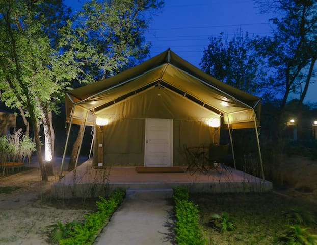 DWELL IN THE WILD IN THIS DREAM LUXURY TENT