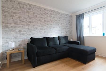 Phoenix park apartment - Paisley - Appartement