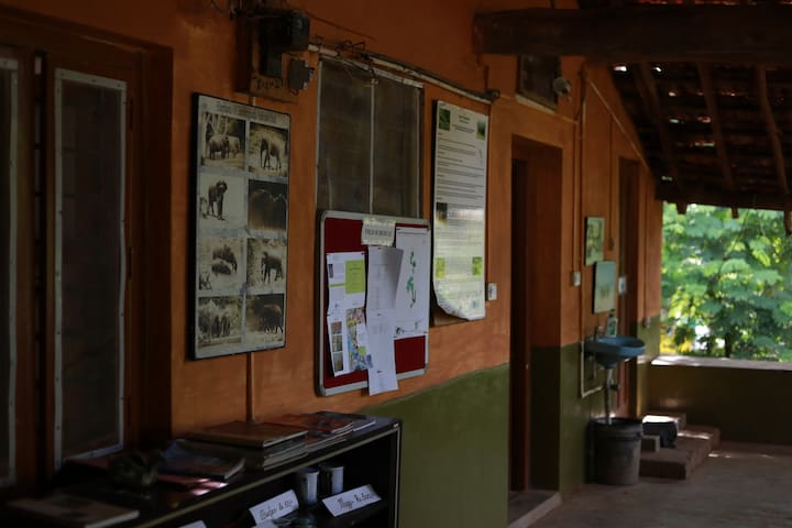 Information on local research and conservation programs displayed on the side walls of the lobby.