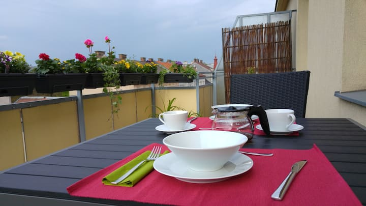 Visit-Vienna - Bright roof terrace apartment