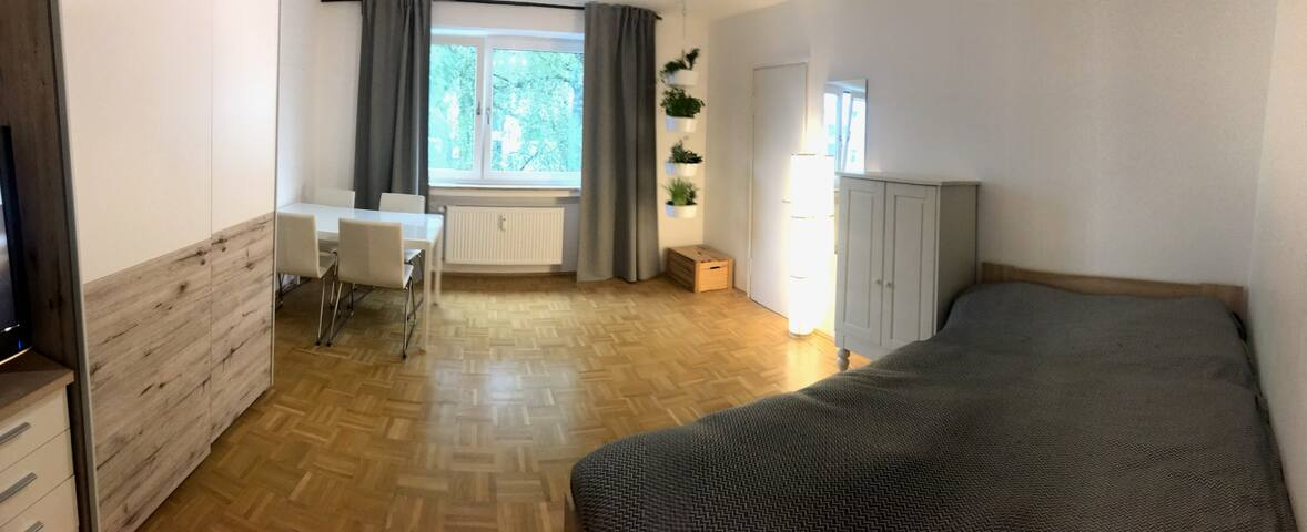 Large, fully equipped 1-Room Apartment