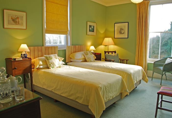 Lovely twin/superking bedroom in a Victorian house - Salisbury - Bed & Breakfast