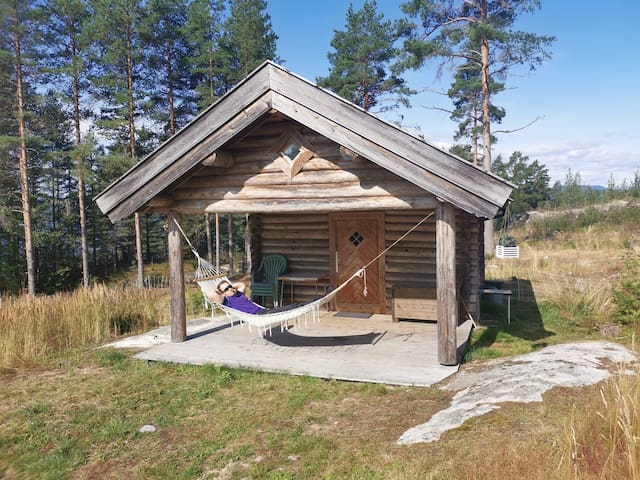 Excotic Norwegian cabin
