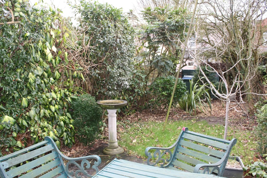 garden -  a little oasis - you can rest or eat here in summer - and you see this from the guest bedroom